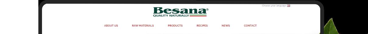 Besana Web Site