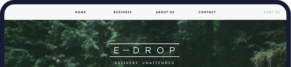 E-Drop Web Site