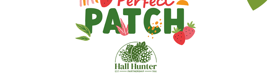 Perfect Patch Logo